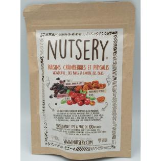 Raisins, Cranberries et Physalis 100g