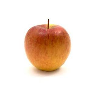 Pomme bio Breaburn, vergers de la champagne, ferme fruitière cap sud, avessac, pays de redon, loire atlantique