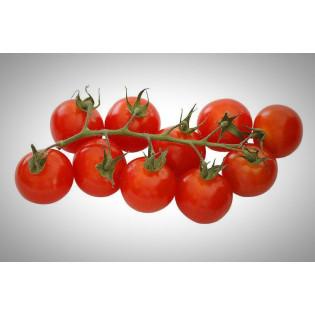 Tomates cerises Bio 100g
