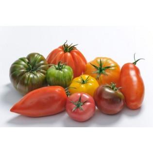 Tomate ancienne Bio 500g