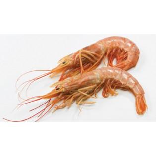 Crevettes sauvages 100g