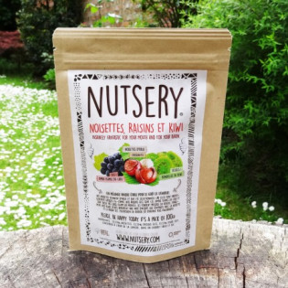 Noisettes, raisins et kiwi 100g